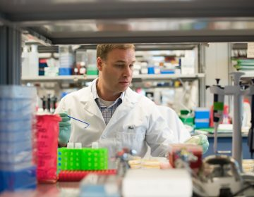 A scientist in a white lab coat works in a Spark Therapeutics lab.