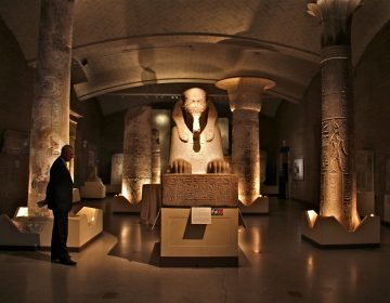 A man looks at a red granite sphinx in the Egypt gallery at the Penn Museum