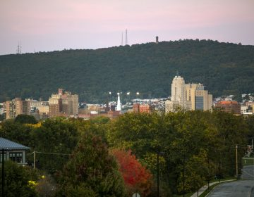 Reading, Pennsylvania. (Lindsay Lazarski/WHYY)
