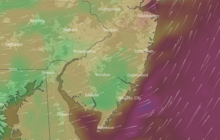 A model simulation from the Windy app that shows winds gusting at the coast to around 40 mph on Sunday morning.