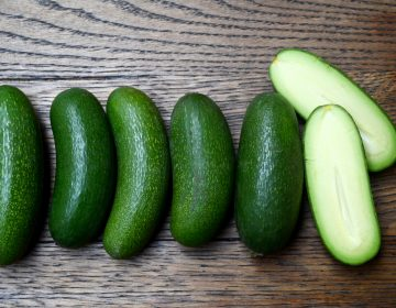 Cocktail avocados: adorable, seedless — safer for those who can't cut the kind with a pit? (Maanvi Singh/for NPR)