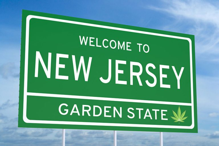 Image result for NEW JERSEY, GARNED STATES