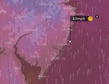 A wind model simulation of wind guests around 40 mph late Friday morning from Windy.com.