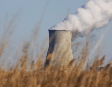 Salem Nuclear Power Plant as seen from the Blackbird Creek. (Brian Drouin/WHYY)