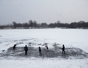 Youths play ice hockey on a frozen pond at Philadelphia's Franklin Delano Roosevelt Park during a winter storm, Thursday, Jan. 4, 2018. (AP Photo/Matt Slocum)