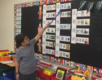 A six-year-old Chinese immersion program in Delaware elementary schools now has more than 1,000 students in kindergarten through fifth grade. Next year the initiative will expand to middle school. (Cris Barrish/WHYY)