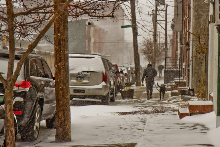 A black lab gets a walk through the snow on Thursday morning in Philadelphia. (Kimberly Paynter/WHYY)