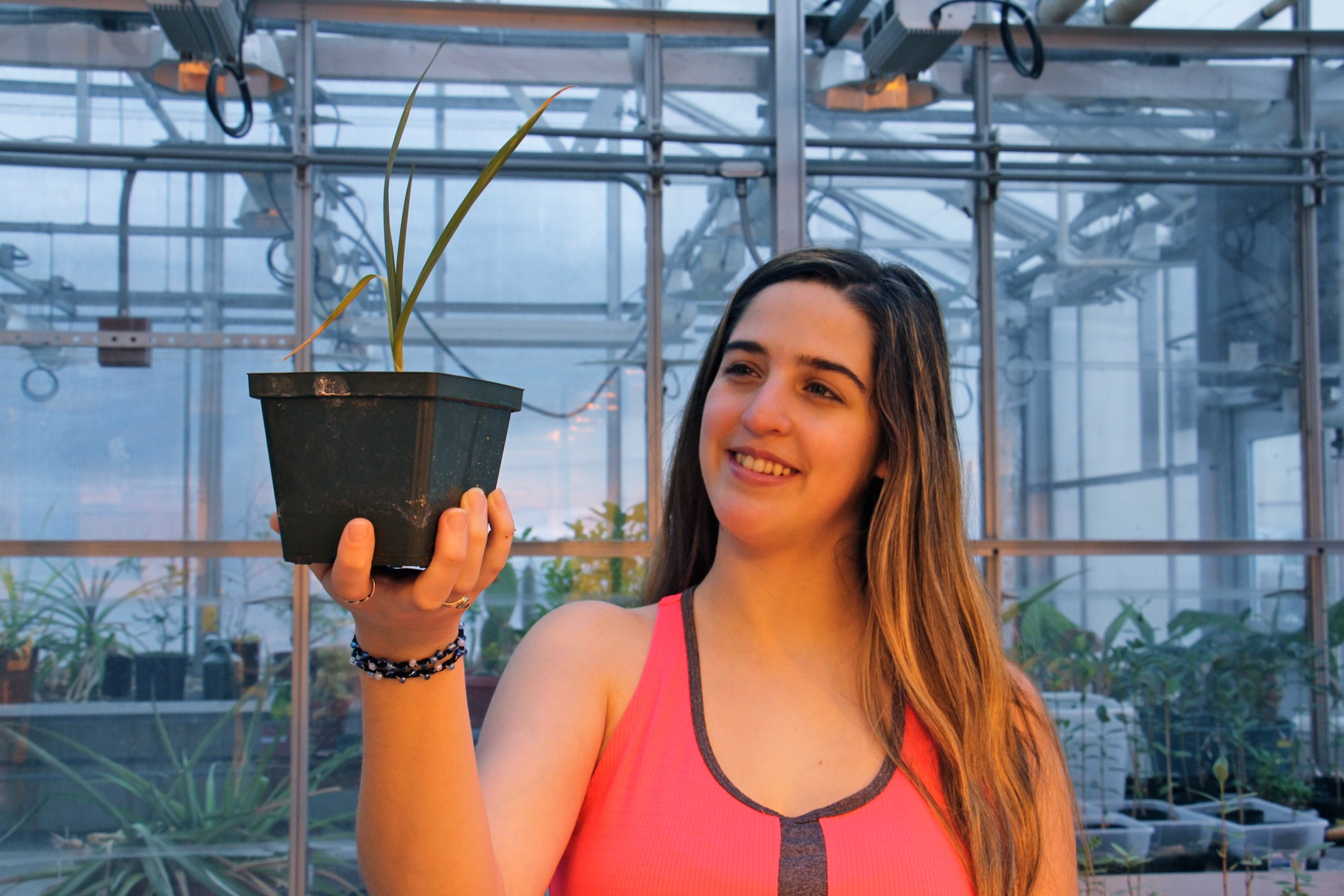 Villanova dyufrny Giannina Guzman holds a garlic plant she grew in Mars simulant, a mix that approximates the soil found on the surface of Mars.