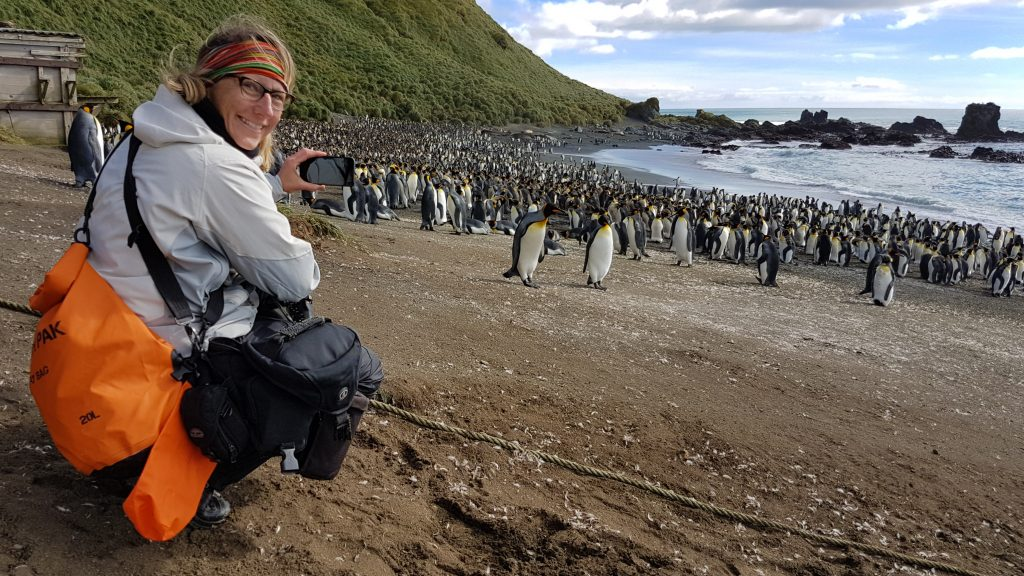 Sherry Ott looks out at a sea of penguins on a beach. She says Antarctica is her top travel destination, but she's conflicted about recommending it because of the carbon footprint. Credit: Sherry Ott