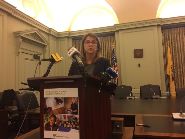 Ruth Ann Norton, president of the Green and Healthy Homes Initiative, says more prevention efforts are needed so children don't suffer learning disabilities and organ damage from lead poisoning. She spoke Wednesday at the State House in Trenton. (Phil Gregory/WHYY)