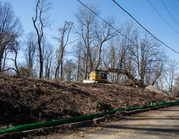 The Mariner East 2 pipeline has officially broken ground in the Delaware County town of Aston. The beginning stages of the pipeline includes clear cutting trees and preparing makeshift roads for the heavy machinery to traverse. (Emily Cohen for StateImpact Pennsylvania)