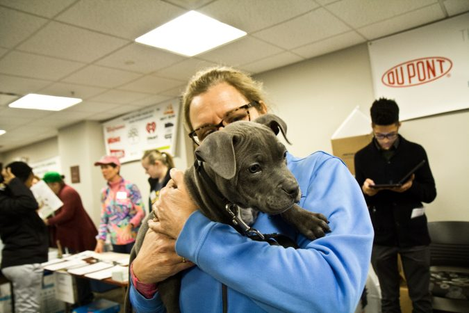 Pup Benji and veterinary physician Carla Andrews make friends at the Delaware Humane Association's free clinic at the Henrietta Johnson Medical Center in Wilmington. (Kimberly Paynter/WHYY)