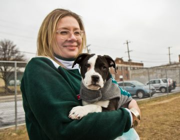 PSPCA staff member Janet Schulze holds Emerald.(Kimberly Paynter/WHYY)