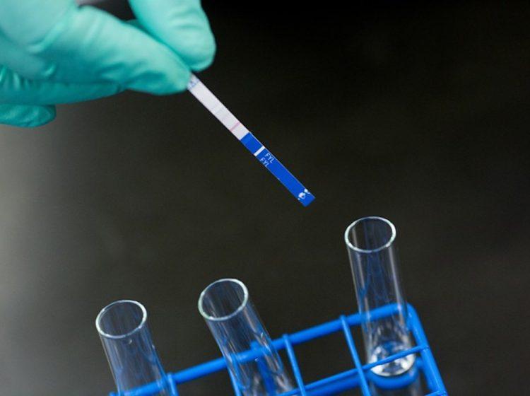 Fentanyl testing strips (JHU BLOOMBERG SCHOOL OF PUBLIC HEALTH/BLOOMBERG AMERICAN HEALTH INITIATIVE)