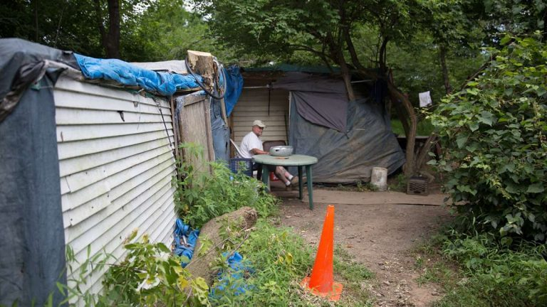 Dave Ritchie, a plumber by trade, lives in a self-made shack in the Pennsylvania woods. (Lindsay Lazarski/WHYY)