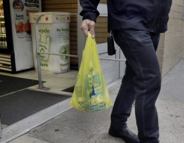 While many New Jersey municipalities have passed ordinances to reduce the use of plastic bags, straws, and Styrofoam containers, there's now a call for a statewide policy. (Richard Drew/AP Photo)