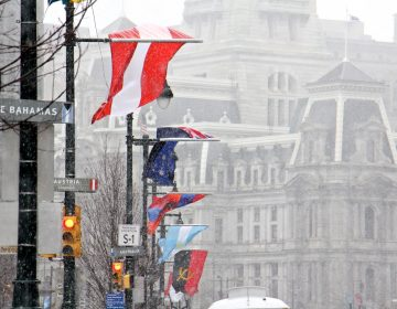 The flags of many nations that line the Ben Franklin Parkway are battered by strong winds as snow falls in Center City.