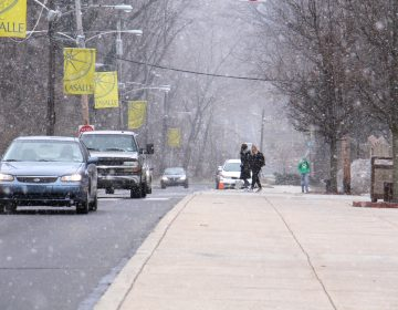 Snow falls on the La Salle University campus in Philadelphia. (Emma Lee/WHYY)
