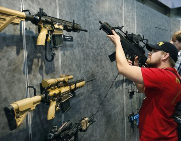 A bill introduced in the Delaware General Assembly and supported by Gov. John Carney would ban assault-style rifles. (AP Photo/John Locher, File)