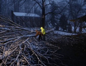 Streets department workers David Boardly, left, and James Ockimey clear a downed tree during a winter storm, Friday, March 2, 2018, in Marple Township, Pa.