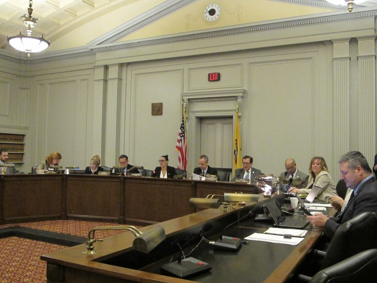 The New Jersey Assembly Budget Committee holds the first of several legislative hearings on Gov. Phil Murphy's budget plan Wednesday. (Phil Gregory/WHYY)