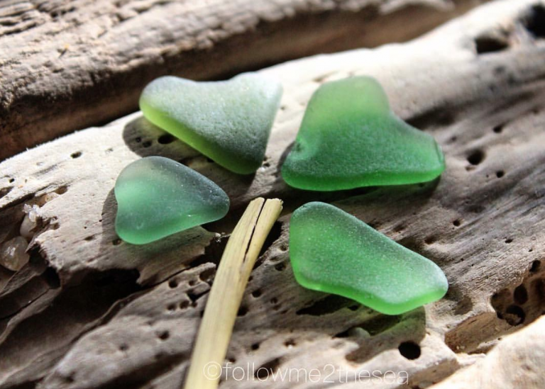 In celebration of St. Patrick's Day, @followme2thesea/Instagram made a sea glass shamrock.