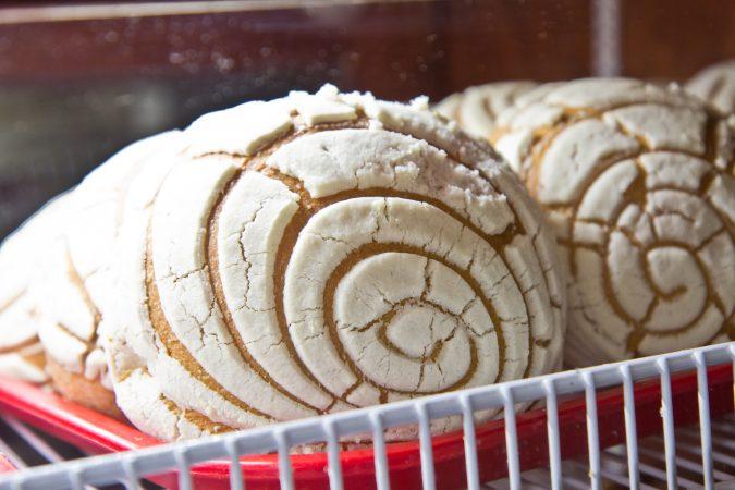 Concha at Panaderia Mexicana El Trebol. (Kimberly Paynter/WHYY)