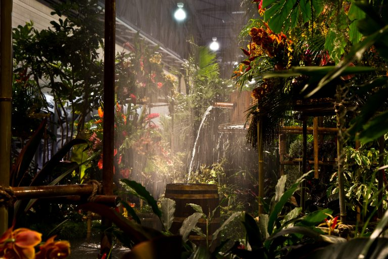 The 2018 Philadelphia Flower Show theme Wonders of Water inspired the main exhibit rainforest theme. (Kimberly Paynter/WHYY)