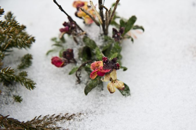 Wednesday morning brought only sleet to Philadelphia. (Kimberly Paynter/WHYY)