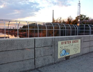 Oyster Creek was New Jersey's first nuclear generation station, opened in 1967. (Emma Lee/WHYY)