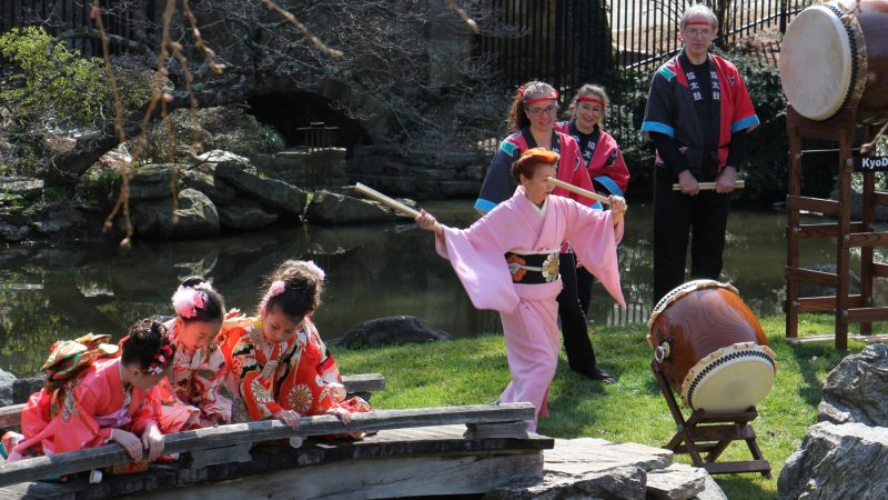 Fumiyo Batta, an instructor at the Japanese Language School of Philadelphia, beats a taiko drum while her students watch the koi fish in the pond at the Japanese House and Garden. (Emma Lee/WHYY)