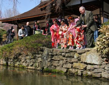 Joseph Zuritsky (right) who donated his prized koi fish to the Shofuso Japanese House and Garden in Fairmount Park, tosses food to the koi with students from the Japanese Language School of Philadelphia.
