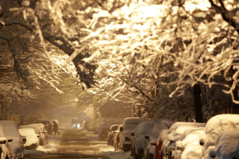 Tree branches and cars are tree branches are covered by heavy snow during a snowstorm last month in Jersey City, N.J. A Garden State lawmakers wants to make sure utility companies are held accountable for their response to power outages from such storms. (AP Photo/Julio Cortez)