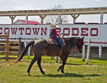 Nate, the Harris family's grandson, rides in pastures of the Cowtown Rodeo in Pilesgrove Township, N.J. (Kimberly Paynter/WHYY)