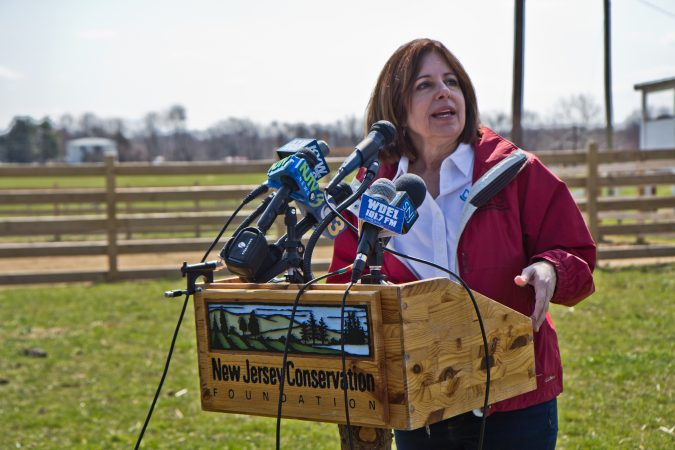 Carrie Lindig is the New Jersey State Conservationist with the U.S. Department of Agriculture. (Kimberly Paynter/WHYY)