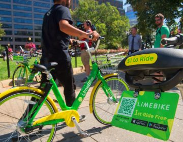 A man rides a LimeBike in Washington, DC. (AFP/Getty Images)