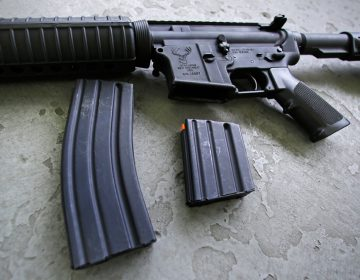 A 30-round magazine, left, and a 10-round magazine (right) rest below an AR-15 rifle  A bill in Delaware would ban the manufacture, sale, purchase, transfer or delivery of large-capacity magazines. (AP Photo/Charles Krupa)
