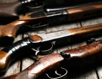 Collection of hunting rifles (Bigstockphoto.com)