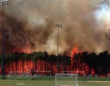 The Continental wildfire burning along the Berkeley/Beachwood border on April 24, 2014. (Photo: JSHN contributor Jennifer Miller)