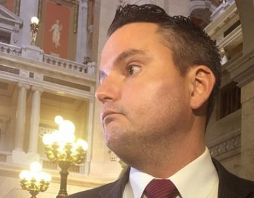 GOP Representative Nick Miccarelli has been called to resign from the House, among other things. But critics have urged House leaders to go further and forcibly remove him from office. (AP, file)