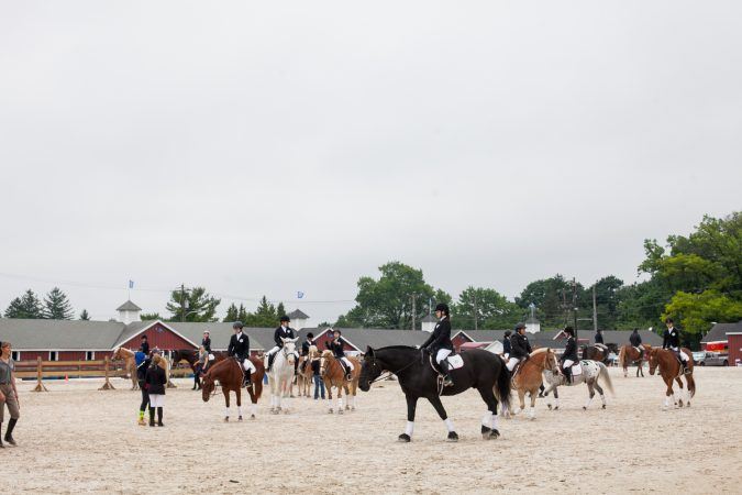 Competitors walk their horses before running the course. (Brad Larrison for WHYY)