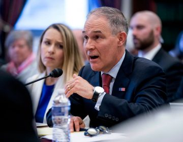 Environmental Protection Agency Administrator Scott Pruitt, accompanied by accompanied by Environmental Protection Agency Chief Financial Officer Holly Greaves, (left), testifies on the EPA FY2019 budget at a House Appropriations Subcommittee on Interior, Environment and Related Agencies on Capitol Hill in Washington, Thursday, April 26, 2018. (Andrew Harnik/AP Photo)