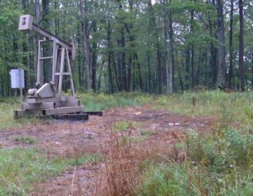 Dead vegetation around a conventional well site in Warren County indicates a possible brine spill. (Pa. Dept. of Environmental Protection)