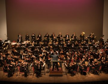 The Delaware Symphony Orchestra performs at the Grand Opera House in Wilmington. (Joe del Tufo/Moonloop Photography)