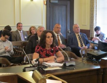 Assemblywoman Pamela Lampitt is the sponsor of the legislation. (Phil Gregory/WHYY)