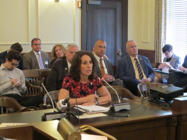 Assemblywoman Pamela Lampitt is the sponsor of the legislation. (Phil Gregory/WHYY)