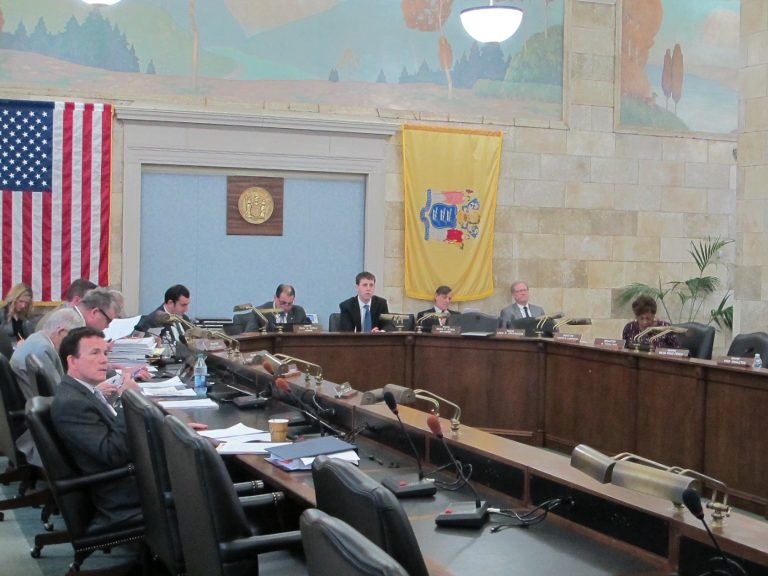 New Jersey's Senate Budget Committee holds the final public hearing on Gov. Phil Murphy's proposed budget Tuesday. (Phil Gregory/WHYY)