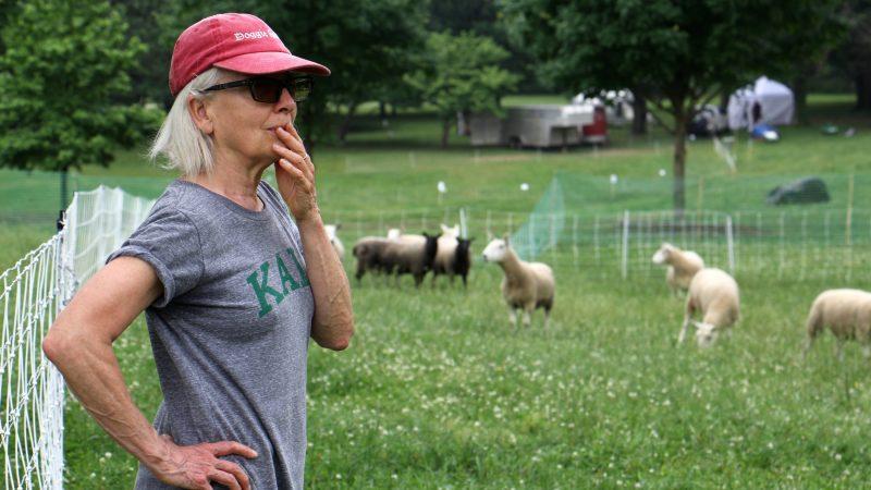Choreographer Ann Carlson watches a rehearsal of