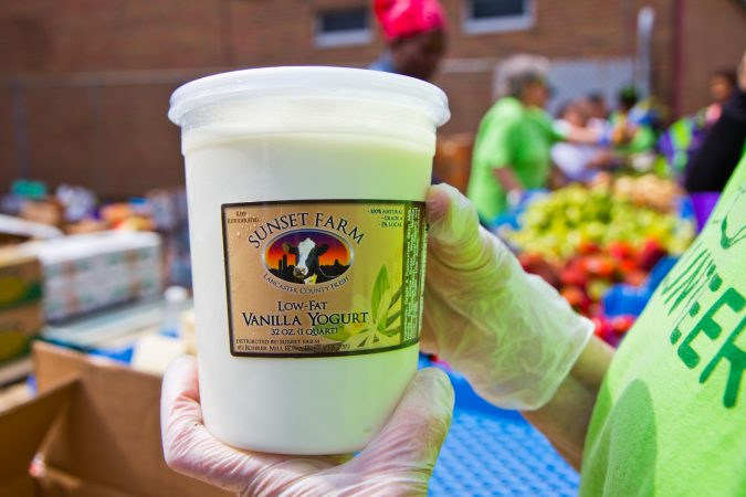 Yogurt made from surplus milk is distributed by Philabundance. (Kimberly Paynter/WHYY)