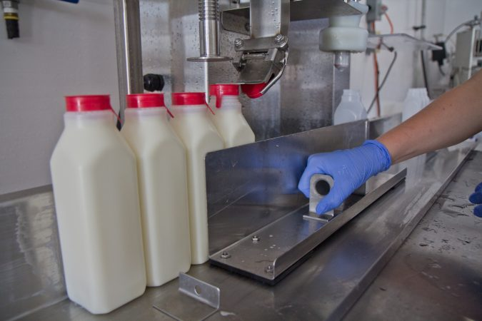 Surplus milk is turned into drinkable yogurt and bottled at Stoltzfus' Cedar Dreams farm in Peach Bottom, Pa. (Kimberly Paynter/WHYY)